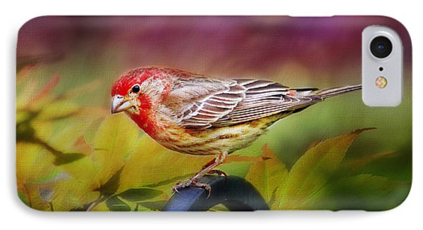 Red Finch IPhone 7 Case by Darren Fisher