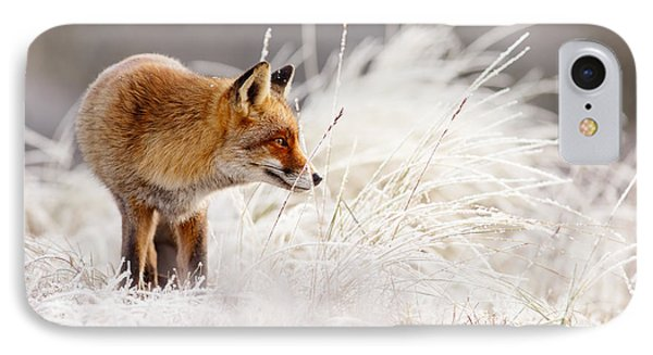 Red Fox And Hoar Frost _ The Catcher In The Rime IPhone Case by Roeselien Raimond