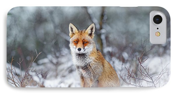 Red Fox Blue World IPhone 7 Case by Roeselien Raimond