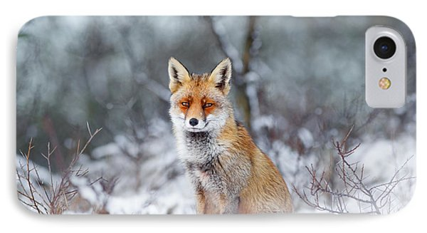 Red Fox Blue World IPhone Case by Roeselien Raimond