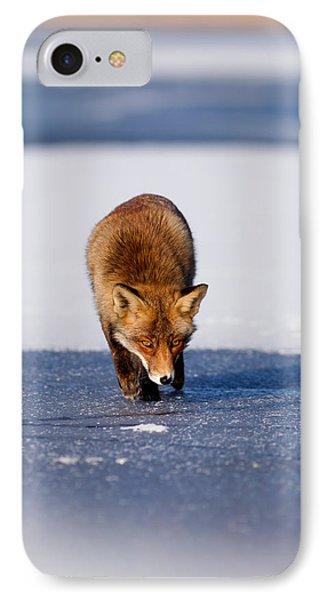 Red Fox Crossing A Frozen Lake IPhone Case by Roeselien Raimond