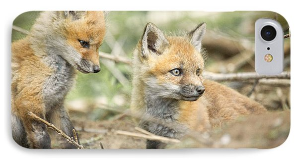 Red Fox Kits Phone Case by Everet Regal