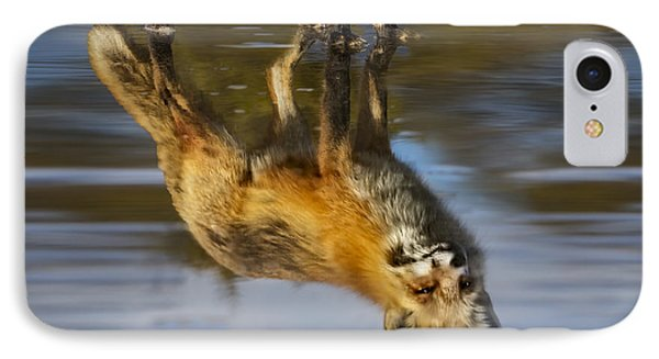 Red Fox Reflection IPhone Case by Susan Candelario