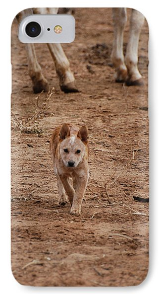 Red Heeler IPhone Case by Thea Wolff