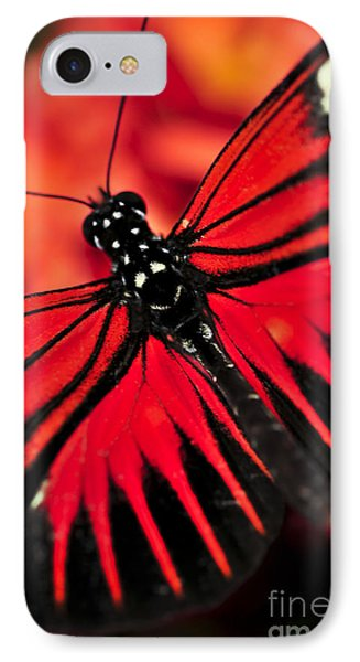Red Heliconius Dora Butterfly Phone Case by Elena Elisseeva
