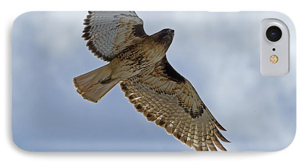Red-tail Hawk #3094 Phone Case by J L Woody Wooden