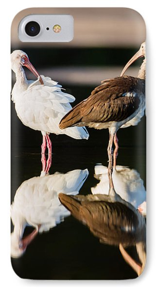 Reflection Of Two Young Ibis IPhone Case by Andres Leon