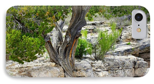 Resilient Tree IPhone Case by Carol Groenen