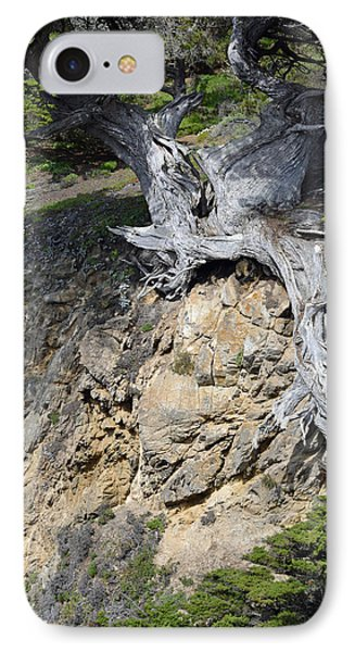 Rooted On The Edge IPhone Case by Bruce Gourley