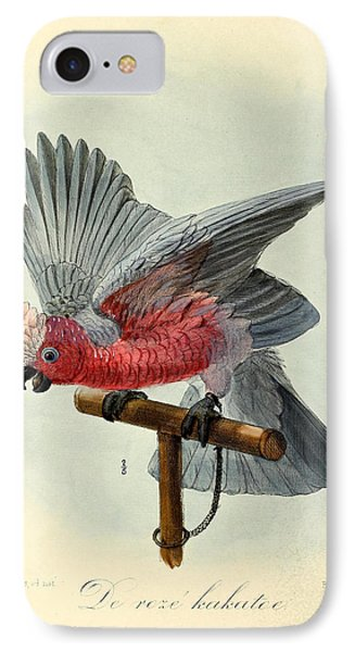 Rose Cockatoo IPhone 7 Case by J G Keulemans