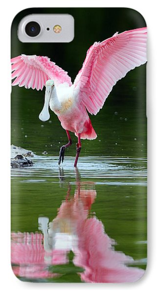 Roseate Spoonbill IPhone Case by Clint Buhler