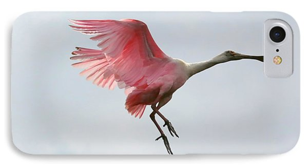 Roseate Spoonbill In Flight IPhone Case by Carol Groenen