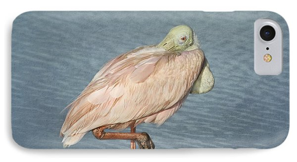 Roseate Spoonbill IPhone Case by Kim Hojnacki