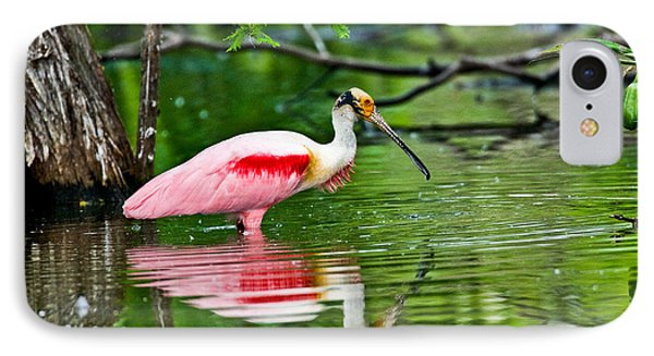 Roseate Spoonbill Wading IPhone Case by Anthony Mercieca