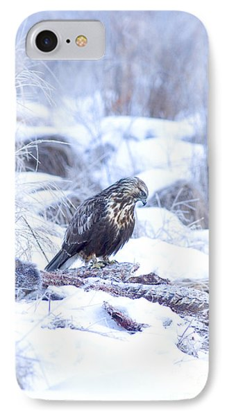 Rough Legged Hawk On Deer Carcass Phone Case by Gregory K Scott