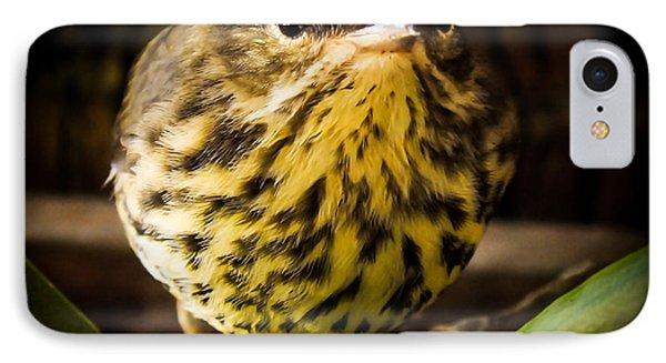 Round Warbler IPhone 7 Case by Karen Wiles
