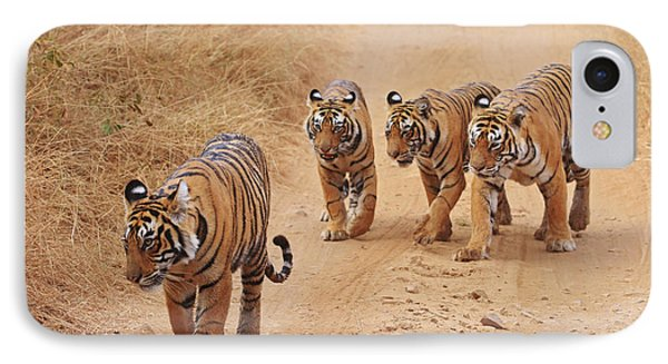 Royal Bengal Tigers On The Track IPhone Case by Jagdeep Rajput