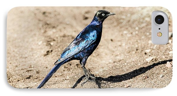 Ruppell's Glossy-starling IPhone 7 Case by Photostock-israel