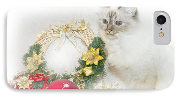 Sacred Cat Of Burma Christmas Time IPhone Case by Melanie Viola