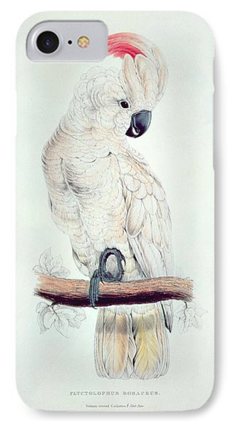 Salmon Crested Cockatoo IPhone 7 Case by Edward Lear