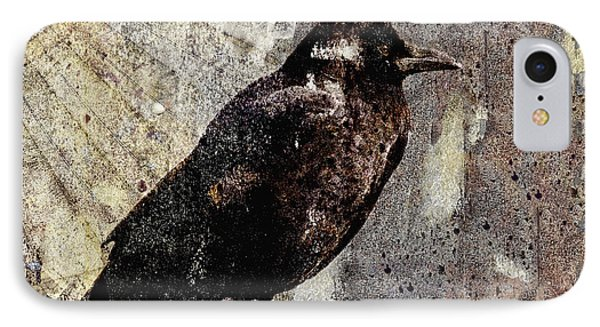 Same Crow Different Day IPhone Case by Carol Leigh