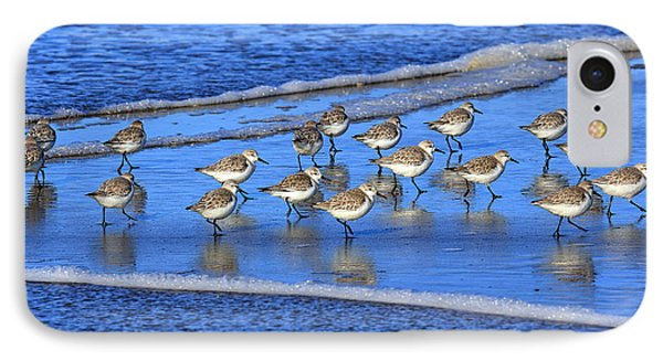 Sandpiper Symmetry IPhone Case by Robert Bynum
