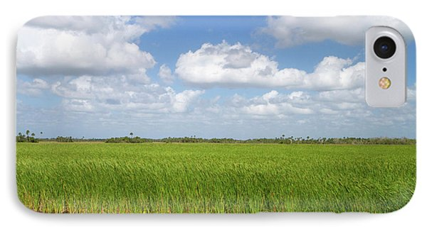 Sawgrass In The Florida Everglades IPhone Case by David R. Frazier