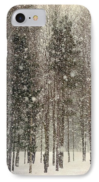 Scenic Snowfall IPhone Case by Christina Rollo