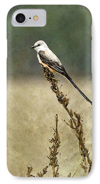 Scissortailed-flycatcher IPhone Case by Betty LaRue