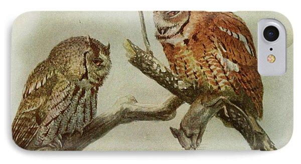 Screech Owls IPhone 7 Case by Louis Agassiz Fuertes