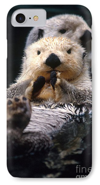 Sea Otter Pup IPhone 7 Case by Mark Newman