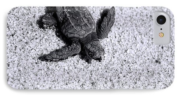Sea Turtle In Black And White IPhone Case by Sebastian Musial