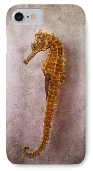 Seahorse Still Life IPhone 7 Case by Garry Gay