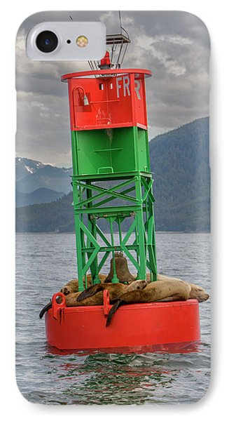 Seals Resting On Buoy IPhone Case by Tom Norring