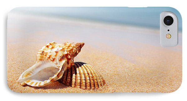 Seashell And Conch IPhone Case by Carlos Caetano