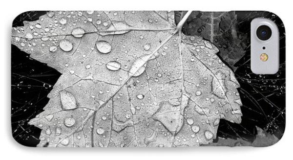 Seasonal Contrast IPhone Case by Karol Livote