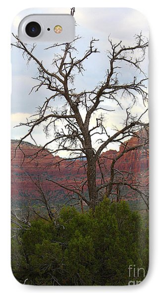 Sedona Tree IPhone Case by Carol Groenen