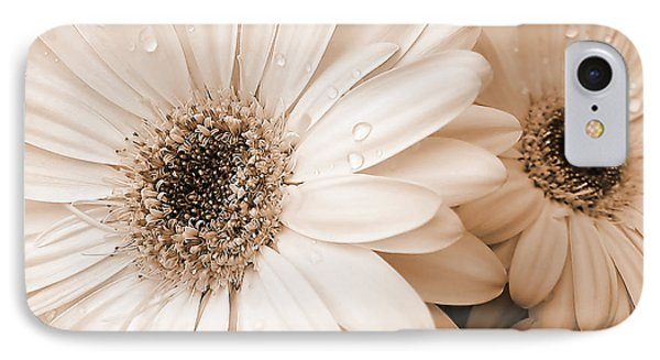 Sepia Gerber Daisy Flowers IPhone Case by Jennie Marie Schell