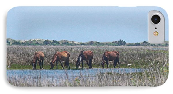 Shackleford Horses And Friends 3 Phone Case by Cathy Lindsey