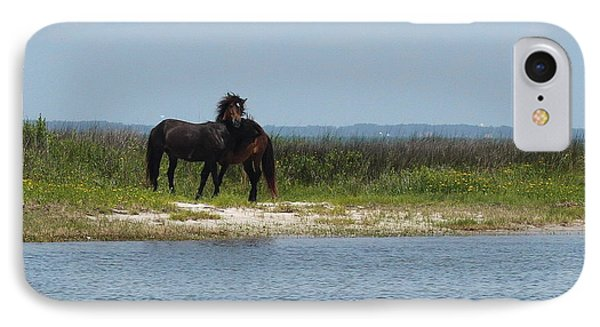 Shackleford Ponies 3 IPhone Case by Cathy Lindsey