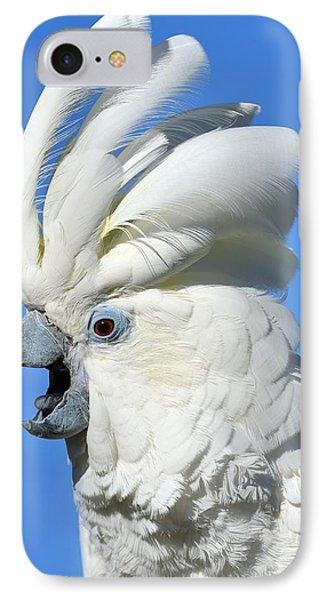 Shady Umbrella IPhone 7 Case by Tony Beck