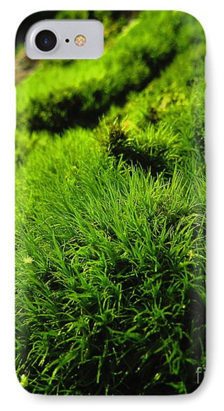 Shaggy Moss IPhone Case by Randy Jackson