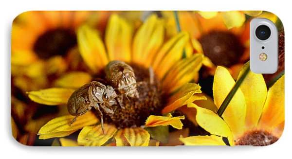 Shell Of A Bug On Flower Phone Case by Jeffrey Platt