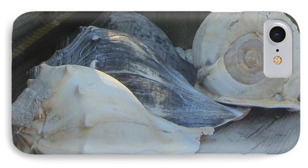 Shells Of Portsmouth Island Phone Case by Cathy Lindsey