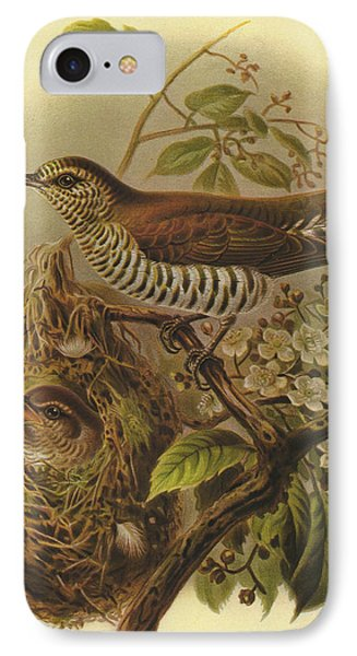 Shining Cuckoo IPhone Case by J G Keulemans