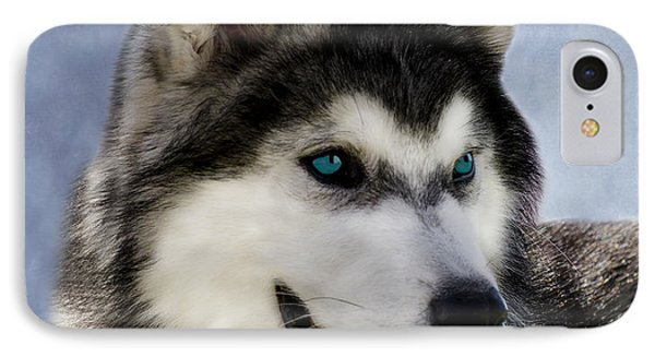 Siberian Husky Phone Case by Linsey Williams