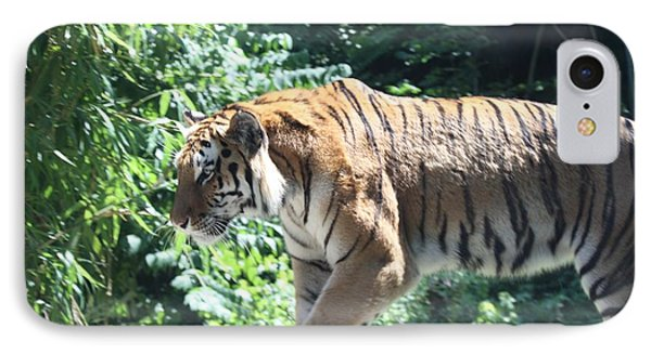 Siberian Tiger On The Prowl IPhone Case by John Telfer