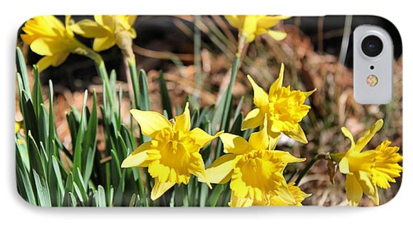 Sign Of Spring Phone Case by Carolyn Ricks