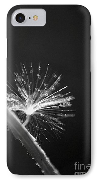 Simpliest Beauty - Bw Phone Case by Aimelle