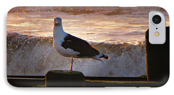 Sittin On The Dock Of The Bay IPhone 7 Case by David Dehner